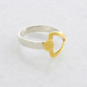 Silber-Ring mit vergoldeten Details 2-Color